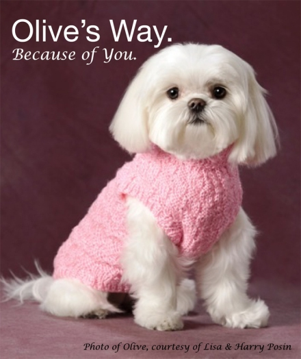 Olive, during her promotional photo shoot for Olive's Way.