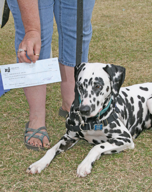Volunteer Pat Hose accepts a donation from The New Barker dog magazine.