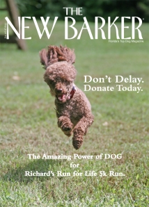 Visit www.thenewbarker.com and click onto the link to donate. Your $1 dollar pledge will get your dog's photo in the next issue of The New Barker dog magazine. Your dog will also be honored on the commemorative poster, The Amazing Power of DOG. Hurry. We only have five days to go.