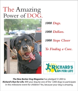 The New Barker Dog Magazine has pledged $1,000 to the 2013 Richard's Run for Life 5k Run. Will your dog be one of the 1,000 to participate in this milestone event for children? Why, yes…because your dog is amazing. $1 dollar. 1,000 dogs. 1,000 steps closer to the cure.