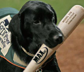 Miss Babe Ruth made her debut with the Greensboro Grasshoppers in 2006.