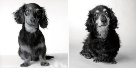 Lily at 8 months (left) and 15 years (right). Photography by Amanda Jones.