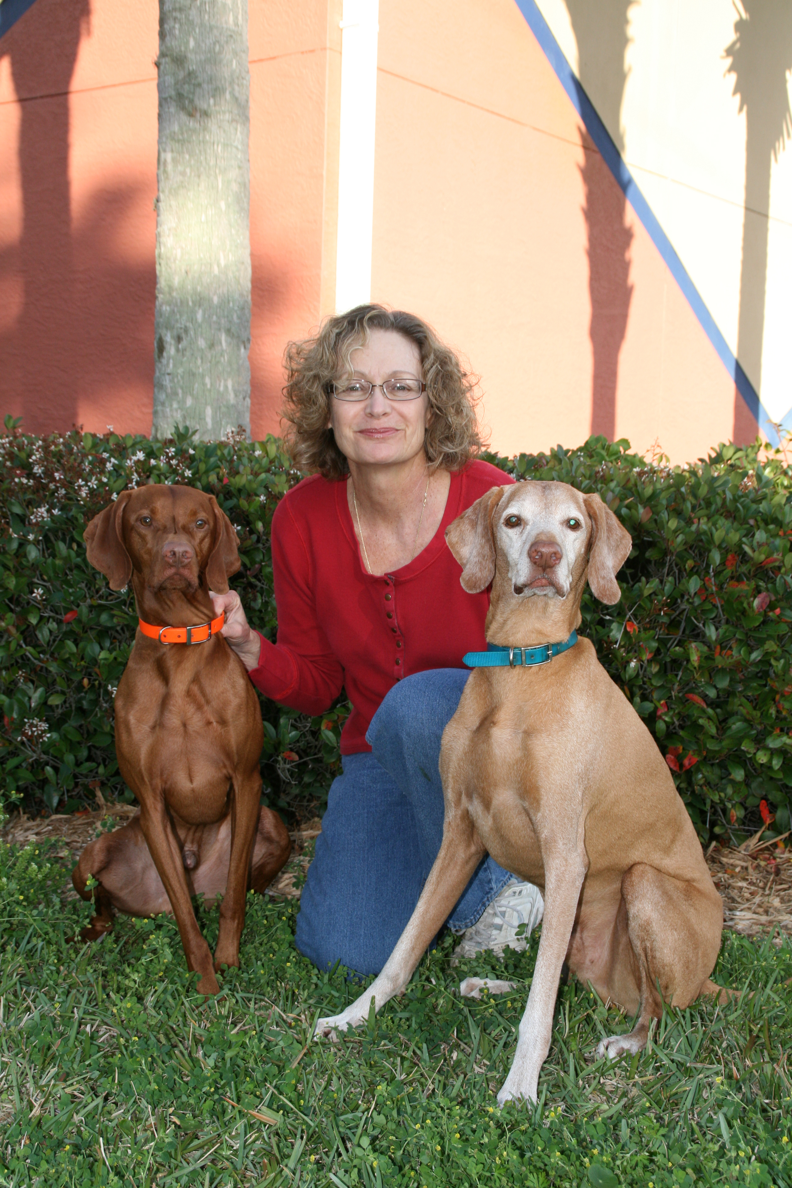 Pam_Stuart_Two_Dogs