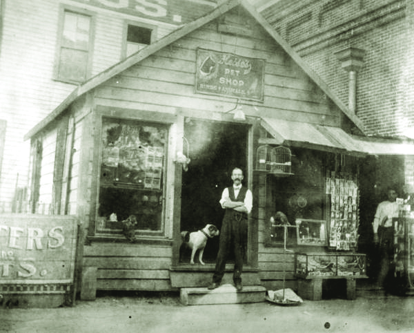 Heise's Pet Shop, Tampa.